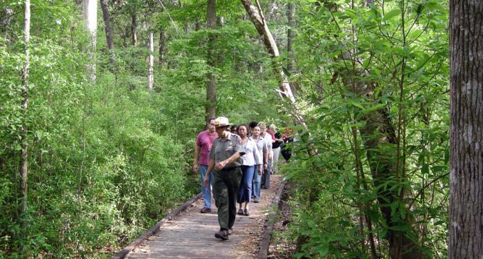 Village Creek Hiking, Bird Watching Big Thicket, East Texas Canoe Trails,