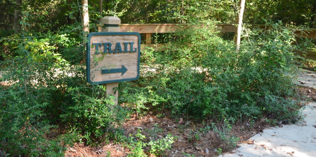 Visit the Big Thicket, Big Thicket hotel, road trip East Texas, Visit the Big Thicket,