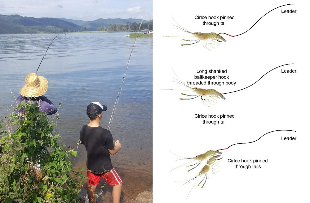 guide to fishing with live shrimp, fishing guide SETX, Kids in the Outdoors