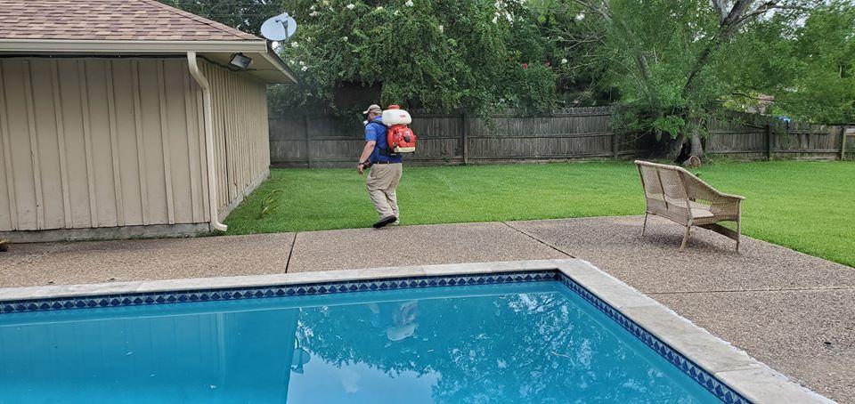 termite control Beaumont, pest control SIlsbee, pest control Crystal Beach, pest control Golden Triangle TX,