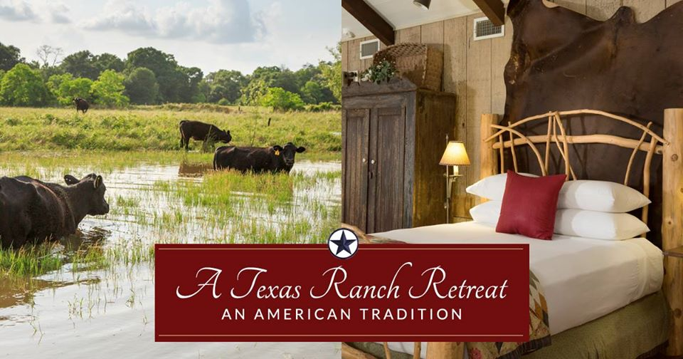 guest ranch Sealy, bed and breakfast Cat Springs, hotel Sealy, B&B Cat Springs, lodging Stephen F Austin Park,