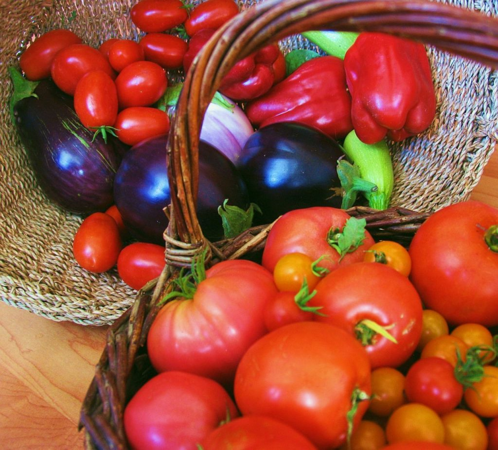 garden East Texas, garden Beaumont, garden SETX, Golden Triangle gardening, vegetable garden Beaumont,