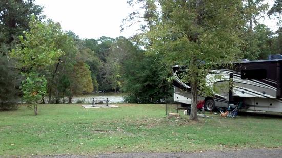road trip East Texas, Big Thicket canoeing, hiking Dam B, visiting Woodville, to do Jasper TX, alligators Texas,