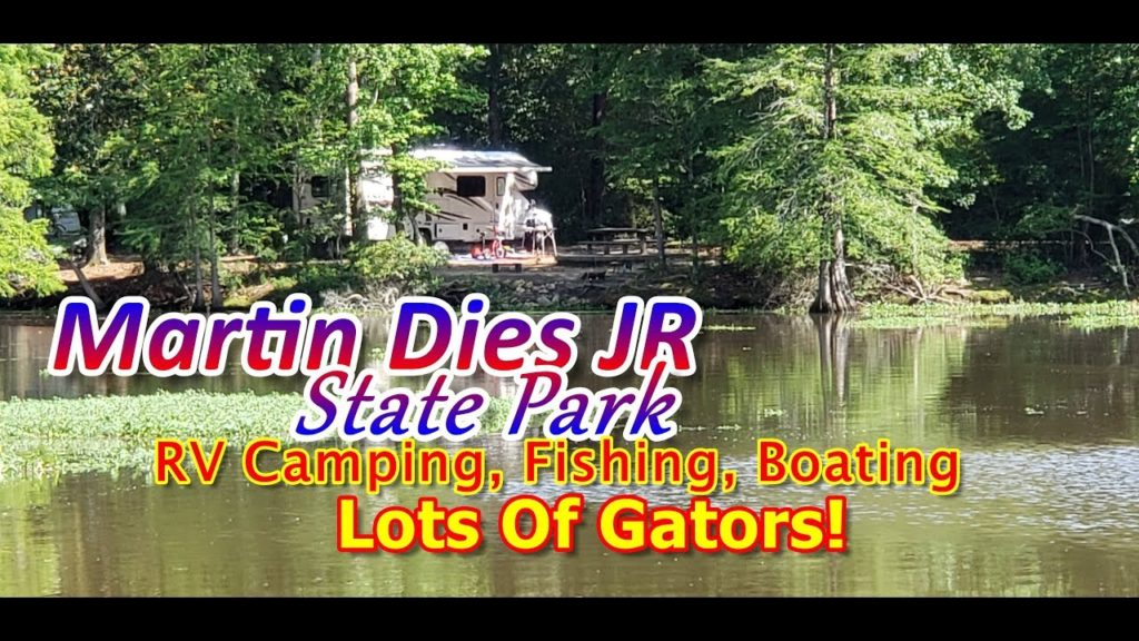 road trip East Texas, Big Thicket canoeing, hiking Dam B, visiting Woodville, to do Jasper TX, alligators Texas,