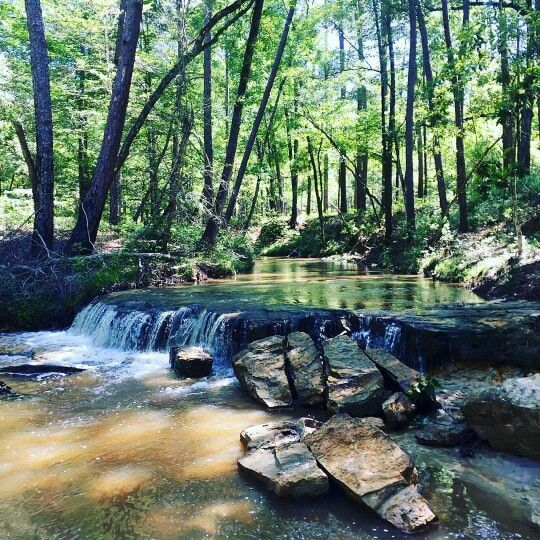 East Texas hiking trails, East Texas road trips, Southeast Texas swimming holes, canoe rentals East Texas,