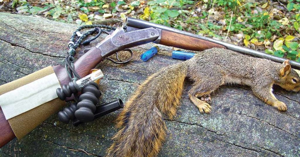 squirrel hunting Beaumont, squirrel hunting Lufkin, Big Thicket Hunting, camping East Texas, road trip Jasper TX, Lake Sam Rayburn activities, Toledo Bend events, squirrel camp, family camping